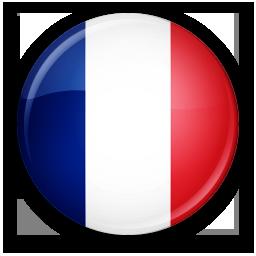 France flag icon